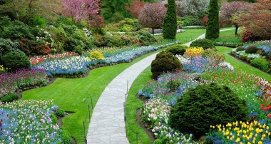 How to find a Landscape Designer Or Landscaping Company and Help You Save Time & Money